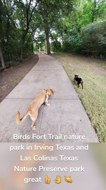 Birds Fort Trail nature park in Irving Texas and Las Colinas Texas Nature Preserve park great 👍 👌 👏