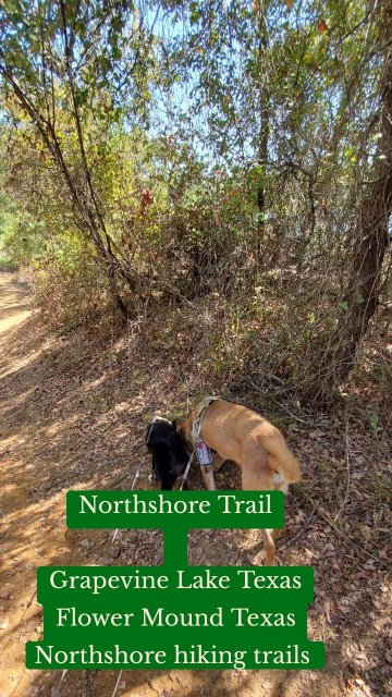 Northshore Trail Grapevine Lake Texas Flower Mound Texas Northshore hiking trails